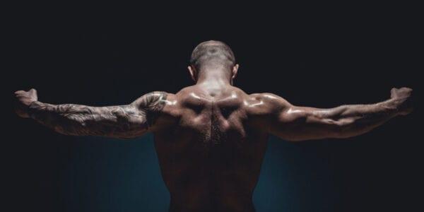 muscular-male-bodybuilder-P9CGEN7-1024×631-1-600×300
